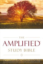 Amplified Study Bible Colour Hardcover