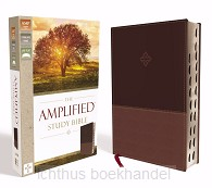 Amplified studybible brown imit. leather