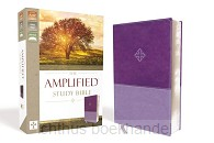 Amplified Study Bible imi leather purple
