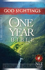 One year bible NLT God sightings